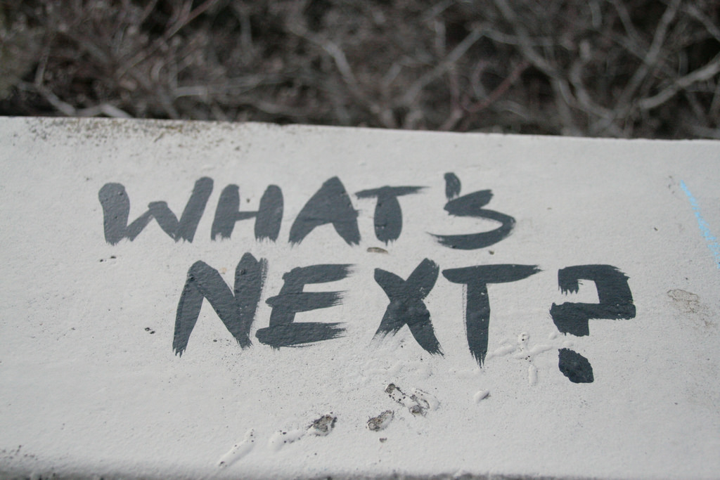 Post Election: What's Next?